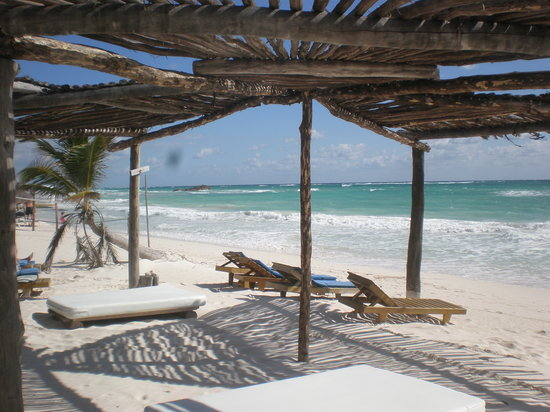 Posada Lamar: The beach - 30 seconds from our bungalow. The shade from the wooden structure was perfect
