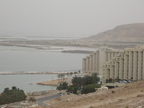 Dead Sea Region, Israel: Dead sea israel