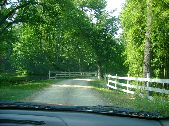 War Hill Inn : Peaceful lane entry - watch out you just might miss it