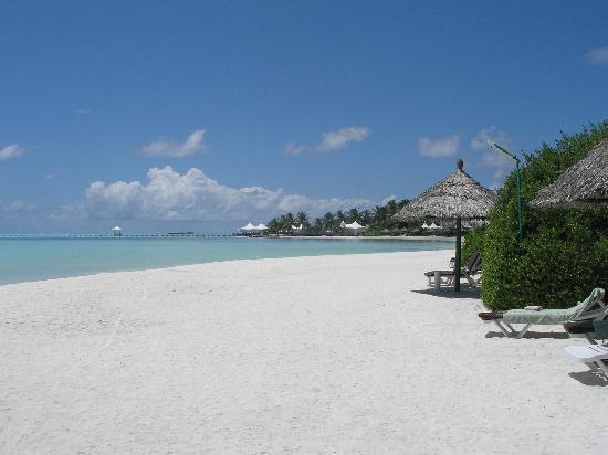 Hakuraa Club Male: la playa