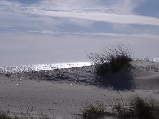 Best Western Apalach Inn: Sand and Sea
