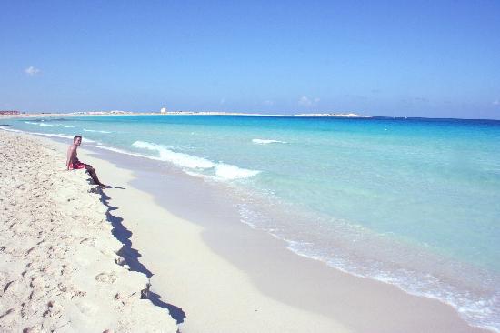 Jaz Almaza Beach Resort: I'm in love with this beach, it's like a paradise!