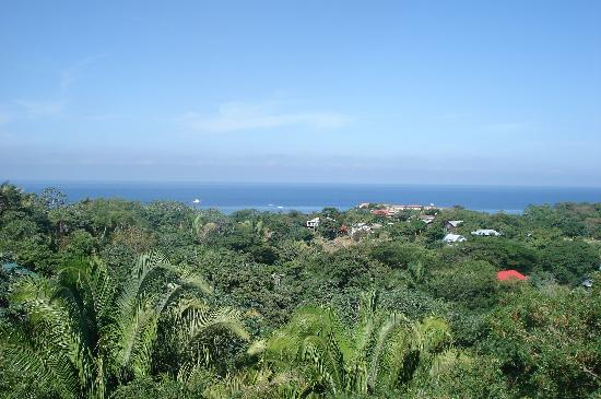 Roatan Bed & Breakfast Apartments: Roofterrace view