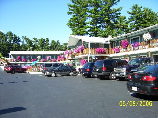 Lake Haven Motel: look at that color