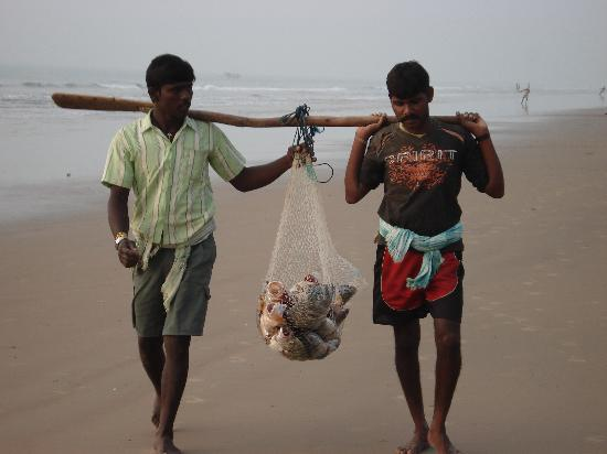 Gopalpur On Sea, Indien: two fisherman with big fish in their net