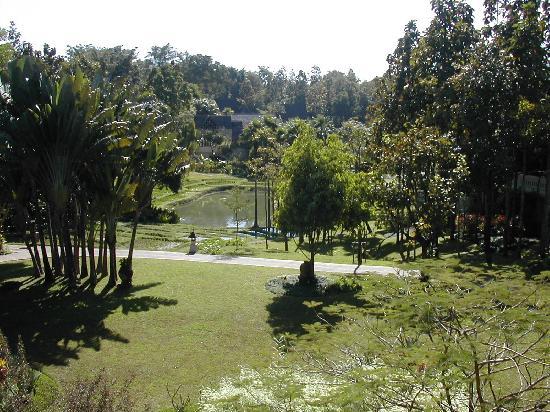 Lana Thai Villa: View from Balcony