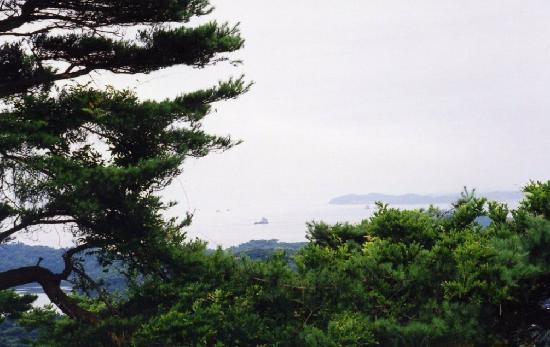 大高森展望台, 大高森から嵯峨渓方面を望む