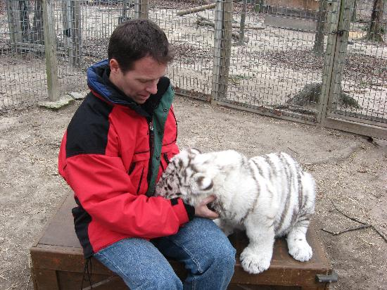 Tiger World : Playing with the cub