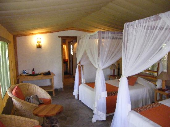 Oloshaiki Camp : The bedroom area of the tent