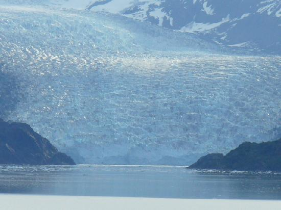 Harvard And Yale Glaciers Over The Bow Picture Of College Fjord Alaska Tripadvisor