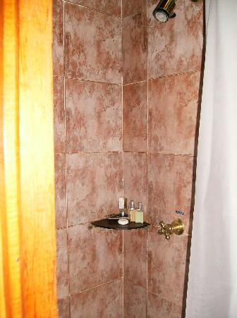 Hotel Casa Azul: pretty tile, but narrow shower