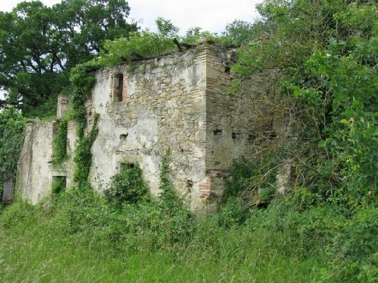 Bosc Lebat : old barn 2