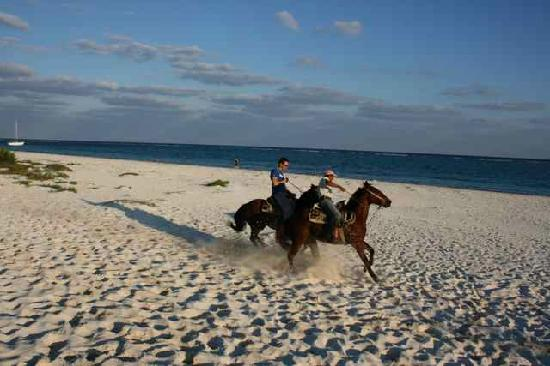 Rancho Baaxal: My husband is galloping on the beach together with on of the tourguides.
