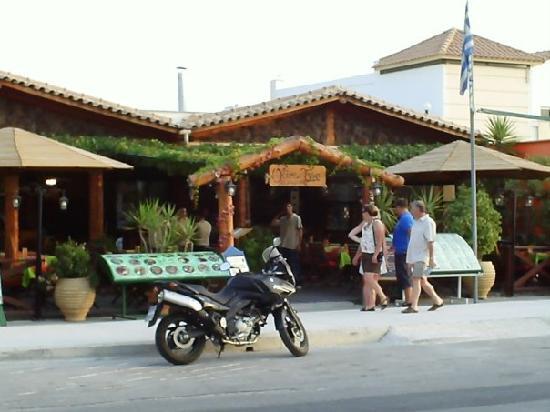 Cronulla Hotel: the olive tree