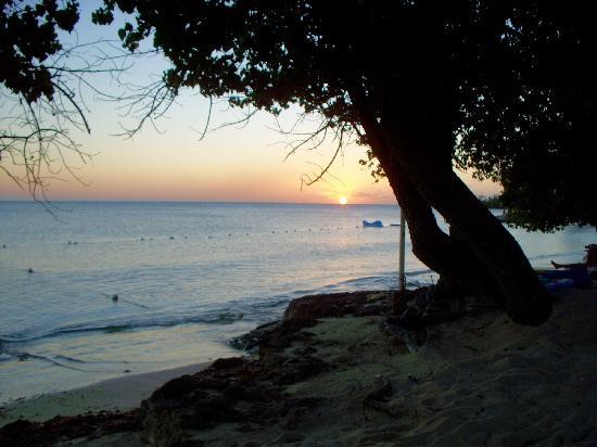 Nude Beach - Picture Of Hedonism Ii, Negril - Tripadvisor-3673
