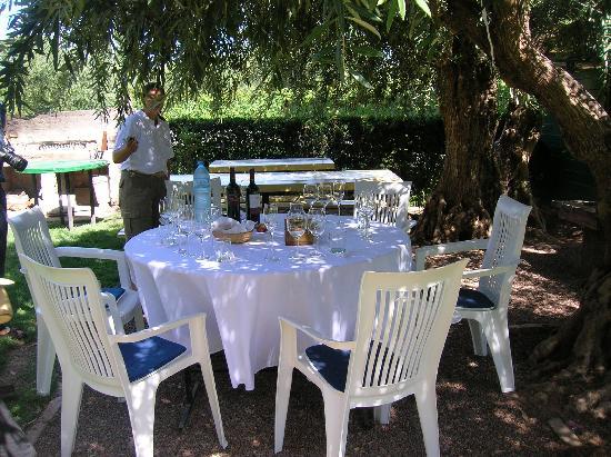 """B&B Plaza Italia: Domaine San Diego winery """"tasting room"""""""