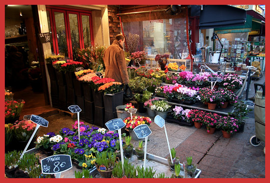 Picking the best flowers - Rue Cler