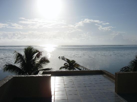 Casa Paraiso: The view from the roof at Casa Carolina. Beautiful!!
