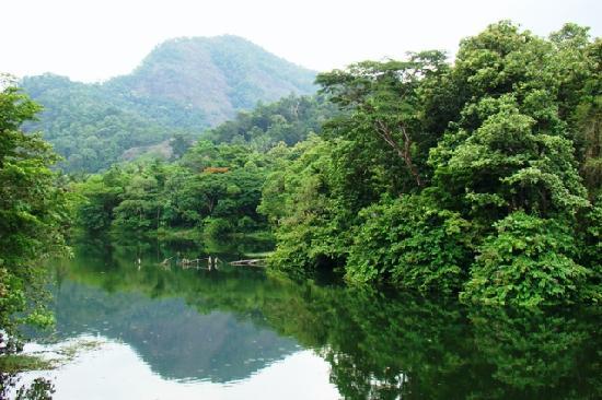 Thattakad, India: Bhoothathankettu Reservoir