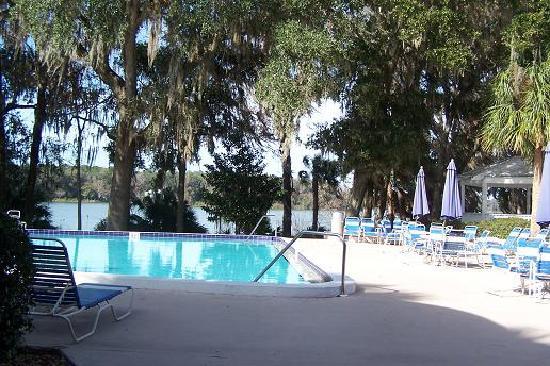 Gazebo Picture Of Wyndham Garden Gainesville Gainesville Tripadvisor