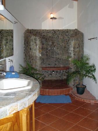 Blue Banyan Inn: The georgous bathroom with a rain shower