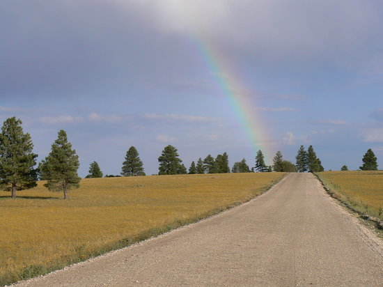 Rainbow en route to lake Ashton, Flagstaff, Arizona
