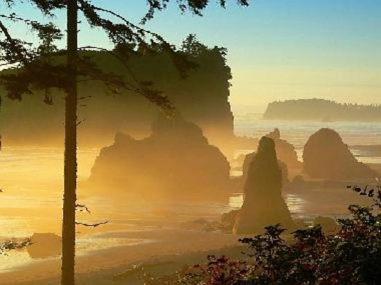 Golden mist at Ruby Beach