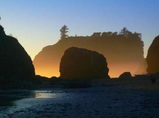 Sunset turns the mist to gold at Ruby Beach