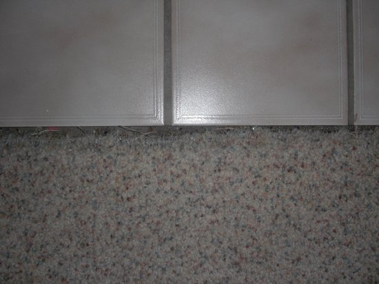 Travelodge Motel of St Cloud :                                     exposed carpet nails