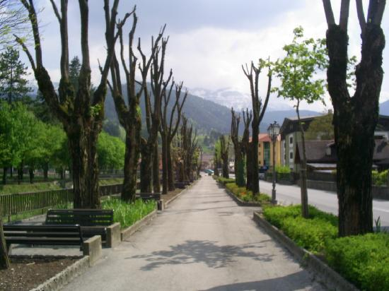 Fiera di Primiero, Italien: fiera