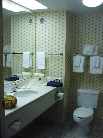 Comfort Inn & Suites : bathroom in king suite