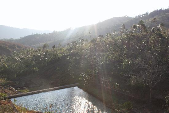 Mundax Homestay Yoga Retreat: The view from the upstairs balcony