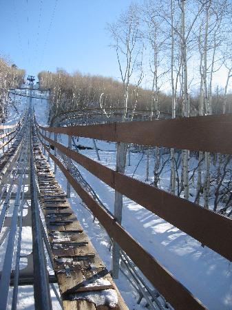 Picture #4 of Alpine Coaster Track