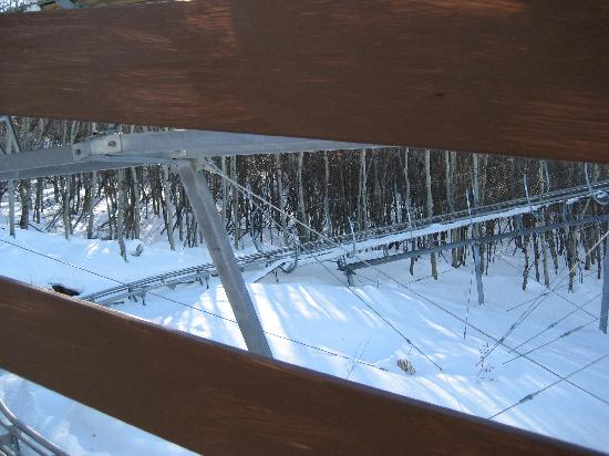 Picture #5 of Alpine Coaster Track