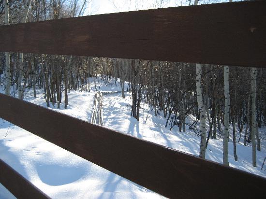 Picture #6 of Alpine Coaster Track