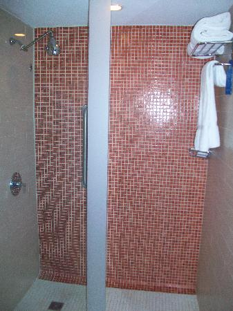 Doubletree by Hilton San Juan: tiled shower