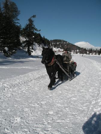 Sundance Grande Mountain Resort & Spa: möglichkeit