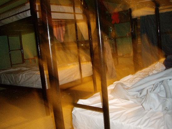 India House Hostel: 10-bed male dorm
