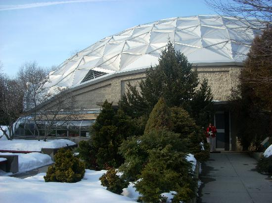 Dinosaur State Park & Museum: A dome protects the track site and serves as a visitor center