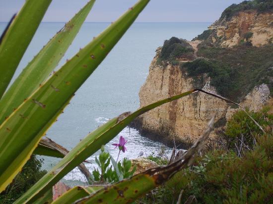 Vila Vita Parc Resort & Spa: Accès à la plage