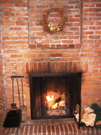 Fall Line Condominiums: The fireplace was awesome!