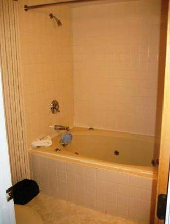 Fall Line Condominiums: Whirlpool tub was perfect for two.