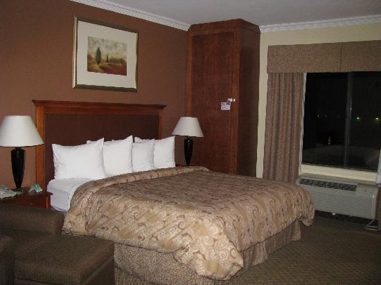 Best Western Joshua Tree Hotel & Suites : the room