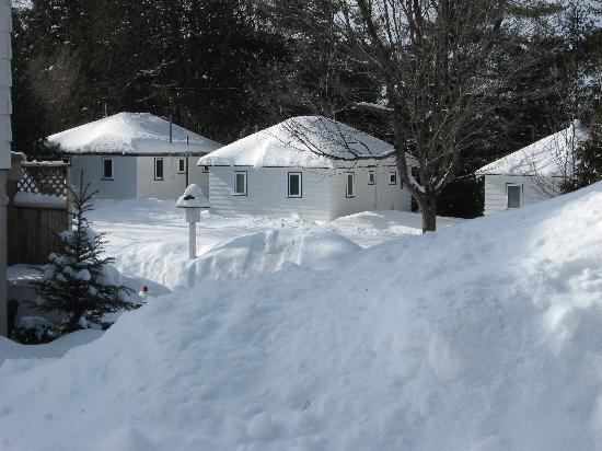 The Pines on Boshkung: Ruby's Cottages in the winter