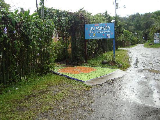 Jacaranda Hotel and Jungle Garden : Eingang