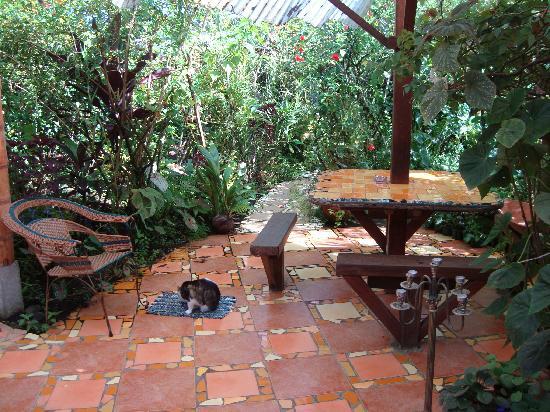 Jacaranda Hotel and Jungle Garden : Innenhof