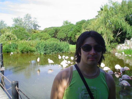 San Clemente del Tuyu, Argentina: Mundo Marino: Lago Paraiso