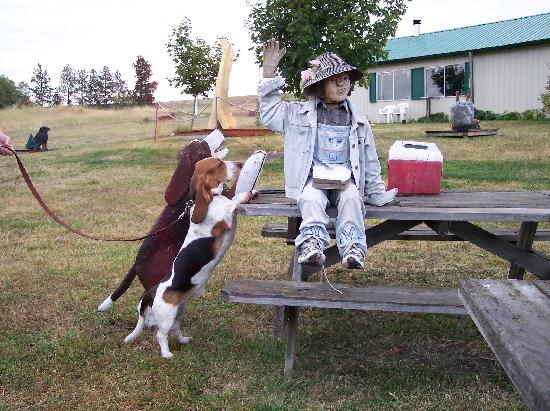 Dog Bark Park Inn: Our basset hound seeing if this wood carving will let her have a bite of sandwich!
