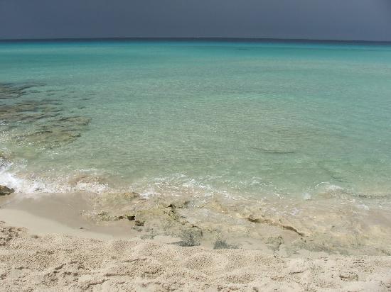 Sant Francesc de Formentera, Spain: il mare della spaiggia vicina