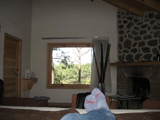 Hotel Bosque Escondido : Una vista preciosa desde la cama